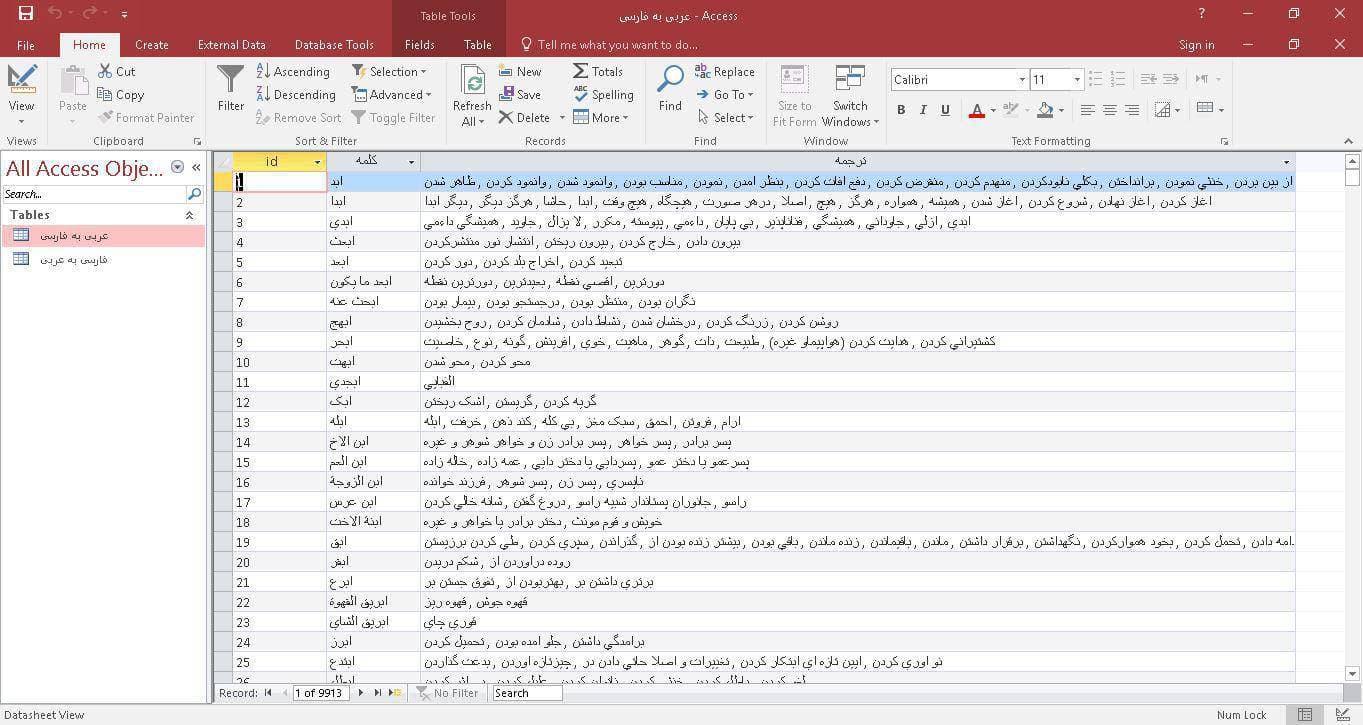 اسکرين شات ديتابيس ديتابيس آماده فرهنگ لغت عربي به فارسي و برعکس در قالب فايل Microsoft Access